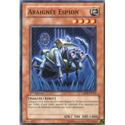 Araignée Espion (C)