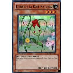 Epinette la Rose Naturia (SR) [HA02]