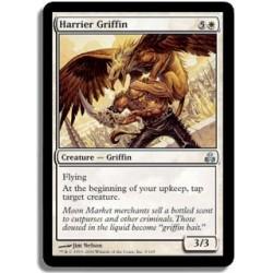Blanche - Griffon busard (U)