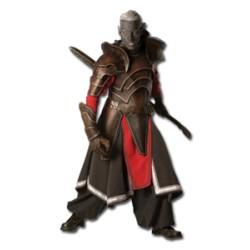 Set armure ELFE NOIR (L)