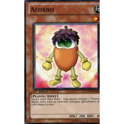 Acorno (C) [PHSW]