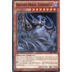 Dragon Orage Ténébreux (C) [SDBE]