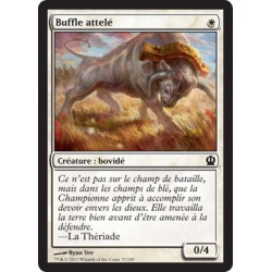 Blanche - Buffle attelé (C) [THS]