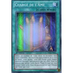 Charge de L'âme (SR) [DRLG]
