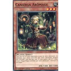 Cananga Arômage (C) [CORE]