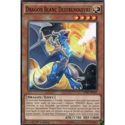 Dragon Blanc Destruvouivre (C) [SDSE]