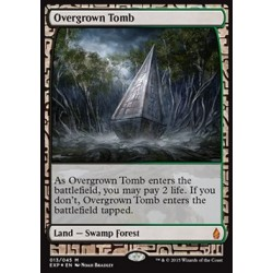 Terrain - Zendikar Expeditions Overgrown Tomb (FOIL)