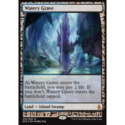 Terrain - Zendikar Expeditions Watery Grave (FOIL)