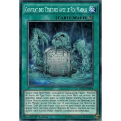 Dimension du Chaos Contrat Des Ténèbres Avec Le Roi Marais (C) [DOCS]