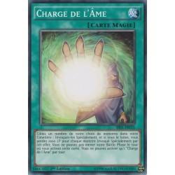 Charge de l'Âme (C) [SR01]