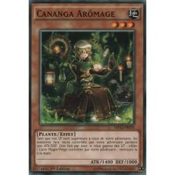 Cananga Arômage (SP) [MP16]