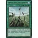 Sanctuaire du Dragon (R) [DPRP]