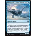 Bleue - Baleine volante à longues nageoires (U) [KLD]
