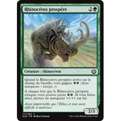 Verte - Rhinocéros prospère (C) [KLD]