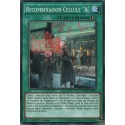 "Recombinaison Cellule ""a"" (C) [INOV]"