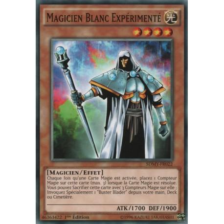 Magicien Blanc Expérimenté (C) [SDMY]