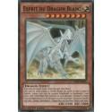 Esprit du Dragon Blanc (C) [LDK2]