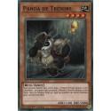 Yugioh - Panda de Trésors (C) [CODT]