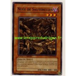 Nuée de Sauterelles (C)
