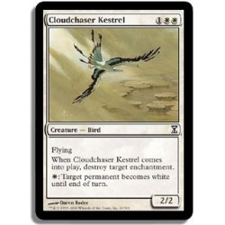 Blanche - Crécerelle chasse-nuages (C)