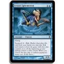 Bleue - Ephéméroptère Errant (C)