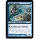 Bleue - Sentinelle tolariane (C)