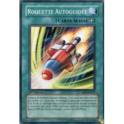 Roquette Autoguidée (C)
