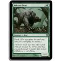Verte - Ours à fourrure cendrée (C)
