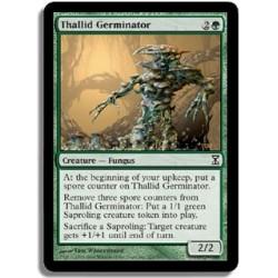 Verte - Thallidé germinateur (C)