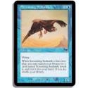 Bleue - Aigle de mer piaillant (C)