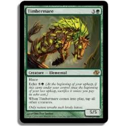 Verte - Cheval de forêt (R)