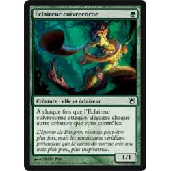 Verte - Eclaireur cuivrecorne (C)