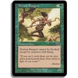 Verte - Rangers arboricoles (C)