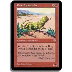 Rouge - Salamandre pyrrique (C)