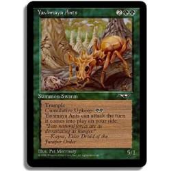 Verte - Fourmis de la yavimaya (U)