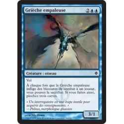 Bleue - Grièche Empaleuse (C) [NEWP]