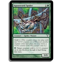 Verte - Araignée aiguafile (C)