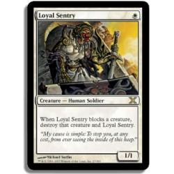 Blanche - Sentinelle loyale (R)