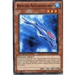 Requin Autocollant (C) [PHSW]