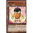 Yugioh - Acorno (C) [PHSW]