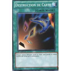 Destruction de Carte (C) [SDGU]