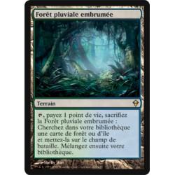 Terrain - Forêt Pluviale Embrumée (R) [ZEN] (FOIL)