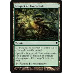 Terrain - Bosquet de Tournebois (C) [ZEN] (FOIL)