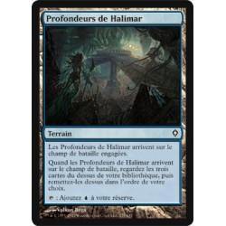 Terrain - Profondeurs de Halimar (C) [WWK] (FOIL)