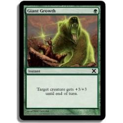 Verte - Croissance gigantesque (C)