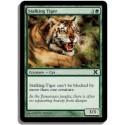 Verte - Tigre en chasse (C)