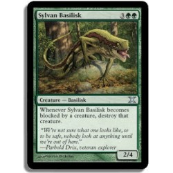 Verte - Basilic sylvestre (U)