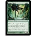 Verte - Araignée de la Filandre (U)