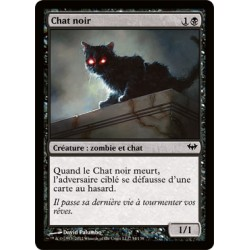 Noire - Chat Noir (C) [DKA]