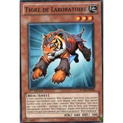 Tigre de Laboratoire (C) [RYMP]